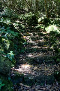 Mt. Scenery Stairway